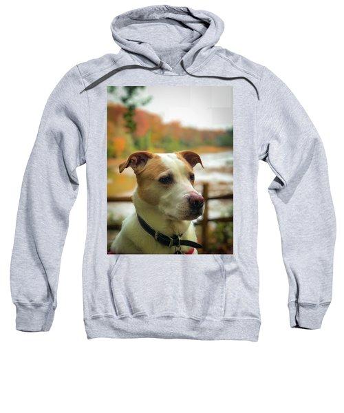 I See Something Sweatshirt