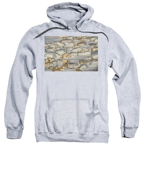 Ice Covered Snow And Sand Sweatshirt