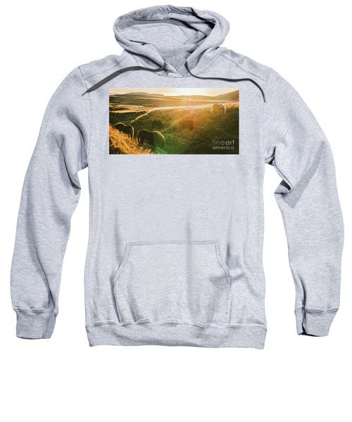 Icelandic Landscapes, Sunset In A Meadow With Horses Grazing  Ba Sweatshirt