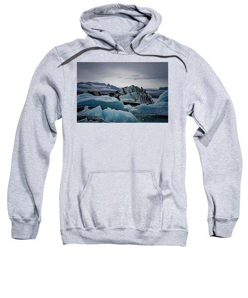 Icy Stegosaurus Sweatshirt