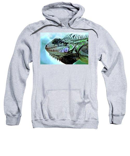 Iggy Sweatshirt