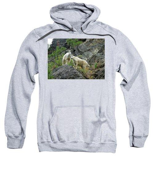 Idaho Mountain Goats Sweatshirt