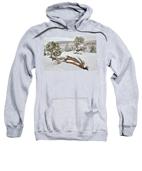 Independence Canyon Of Colorado National Monument Sweatshirt