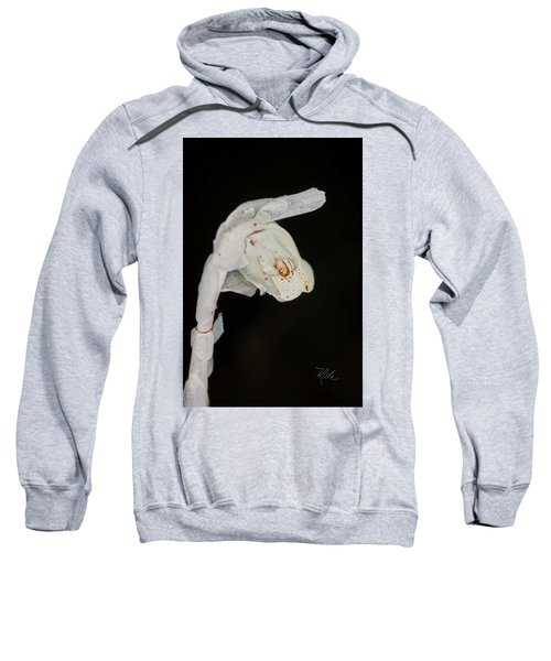 Indian Pipe Rabbit Head Sweatshirt