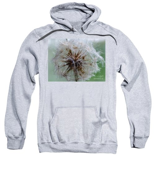 Irish Daisy Sweatshirt