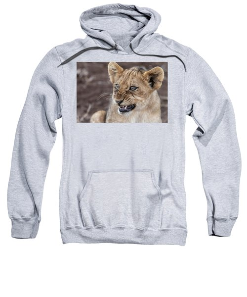 Irritated Lion Cub Sweatshirt
