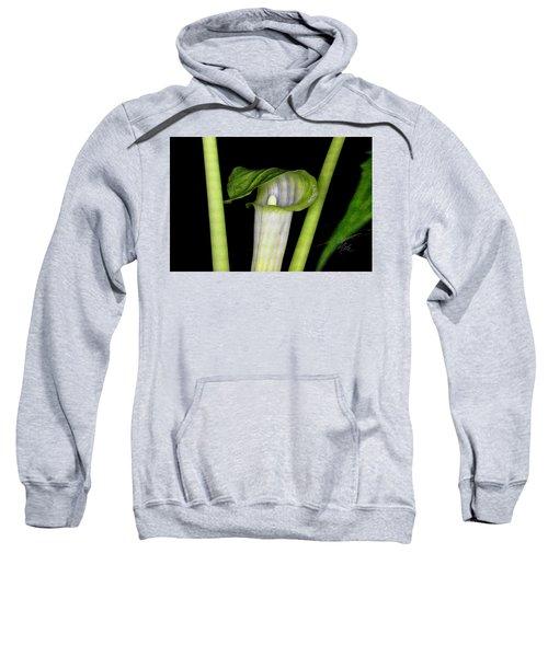 Jack In The Pulpit Sweatshirt