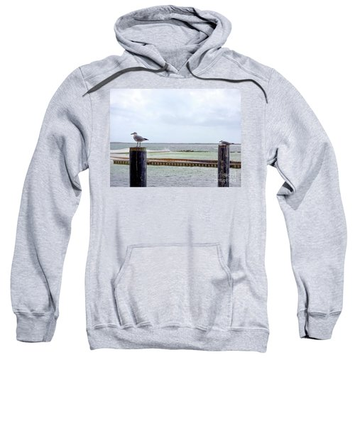 Just Chillin' Sweatshirt