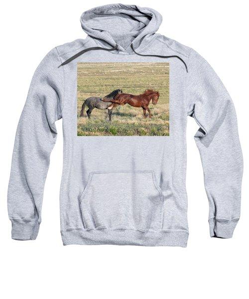 Kapow Sweatshirt