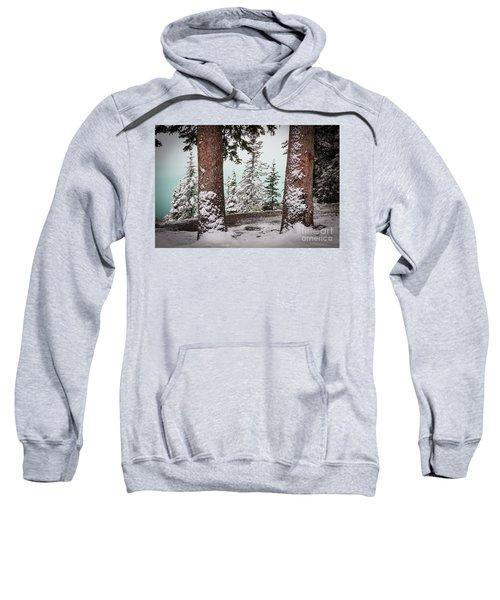 Lake Louise Trees Sweatshirt