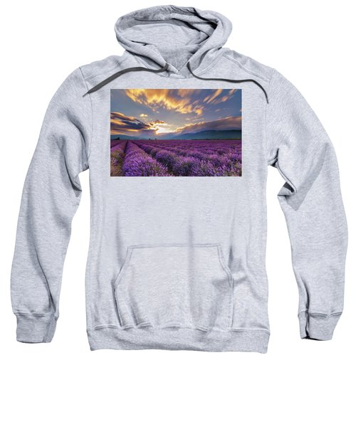 Sweatshirt featuring the photograph Lavender Sun by Evgeni Dinev