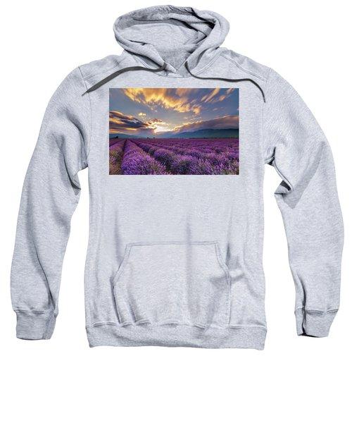 Lavender Sun Sweatshirt