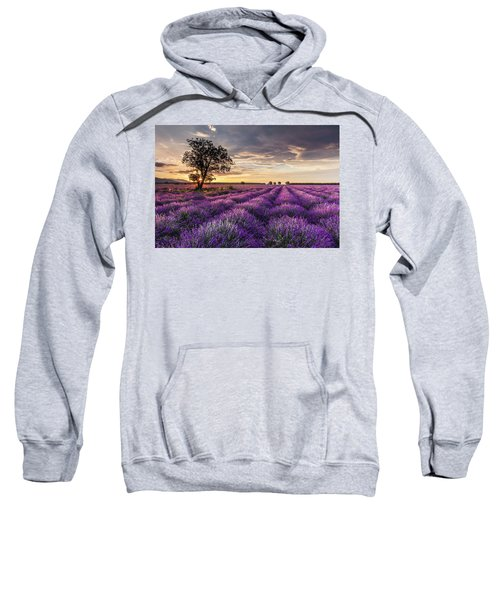 Sweatshirt featuring the photograph Lavender Sunrise by Evgeni Dinev