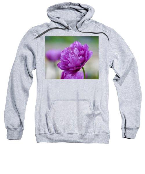 Lavender Tulip Sweatshirt