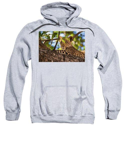 Lc11 Sweatshirt