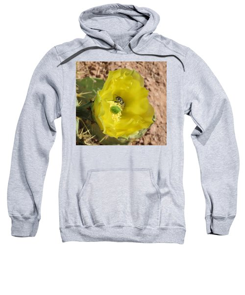 Leaf-cutter Bee Bathing In Gold Sweatshirt