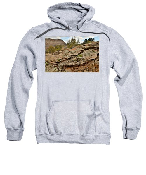 Lichen Covered Ledge In Colorado National Monument Sweatshirt