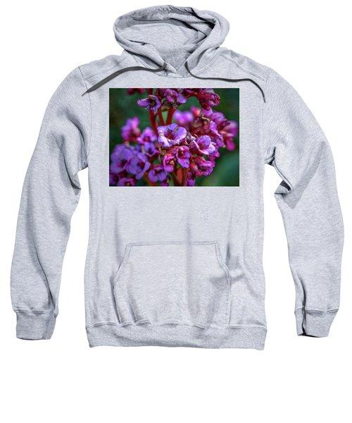 Lilac #h9 Sweatshirt