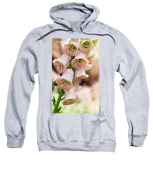 Little Bells Sweatshirt