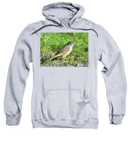 Looking For Food Sweatshirt