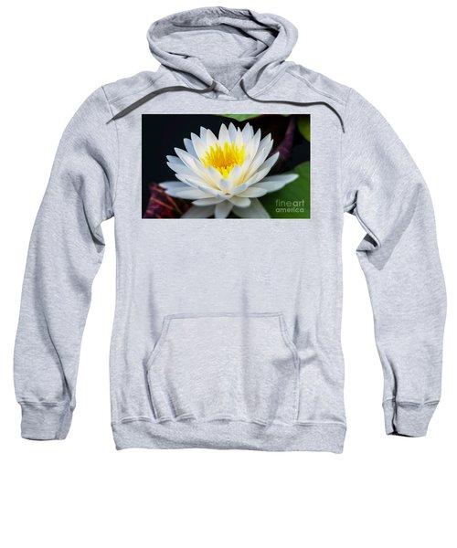Lotus Gold Sweatshirt