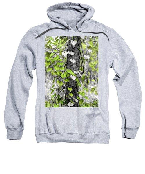 Love Of Nature Sweatshirt