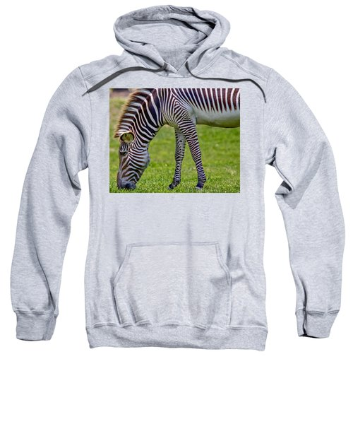 Love Zebras Sweatshirt