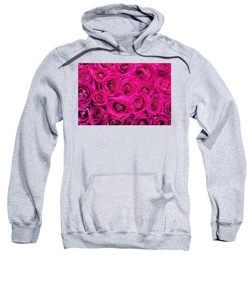 Magenta Roses Sweatshirt