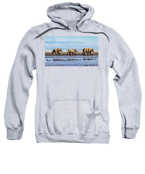 Mama Bear And Her Two Cubs On The Beach. Sweatshirt
