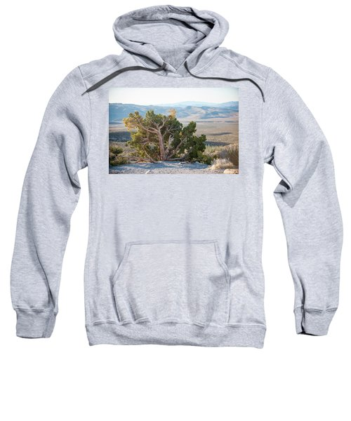 Mesquite In Nevada Desert Sweatshirt