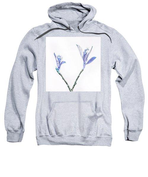 Minimalist Chokeberry Buds Sweatshirt