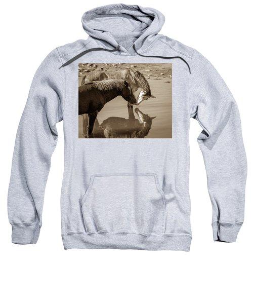 Mirrored Souls Sweatshirt