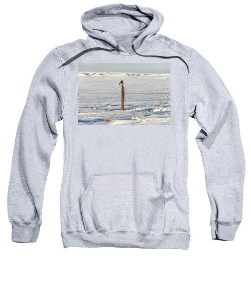 Missing A Boot? Sweatshirt