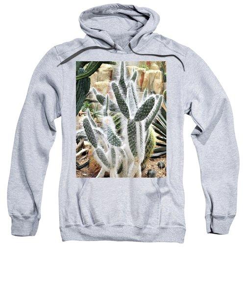 Mojave Prickly Pear Sweatshirt