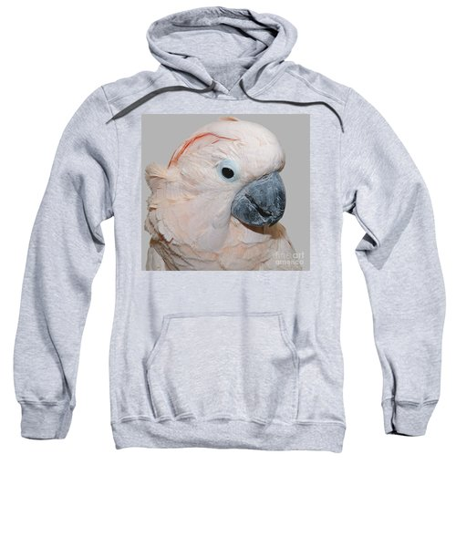 Moluccan Cockatoo Sweatshirt
