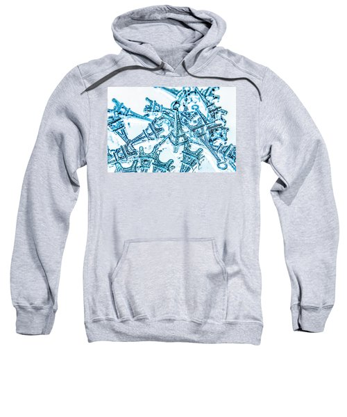 Monumental Miniatures Sweatshirt
