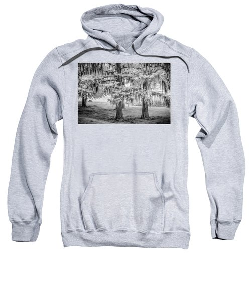 Moss Laden Trees 4132 Sweatshirt