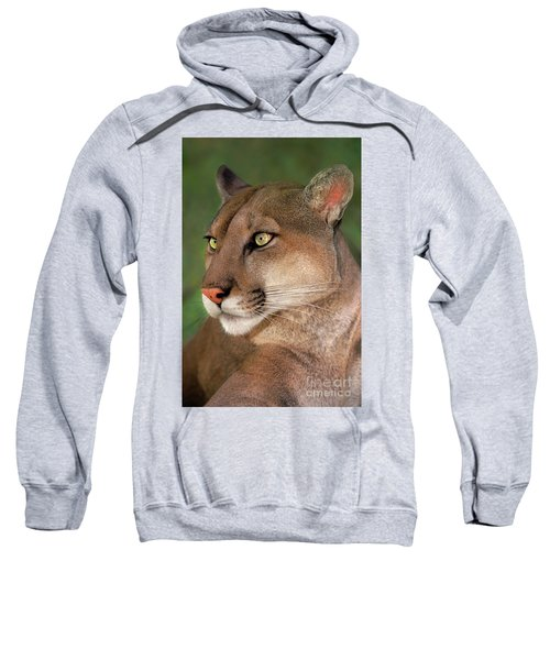 Mountain Lion Portrait Wildlife Rescue Sweatshirt