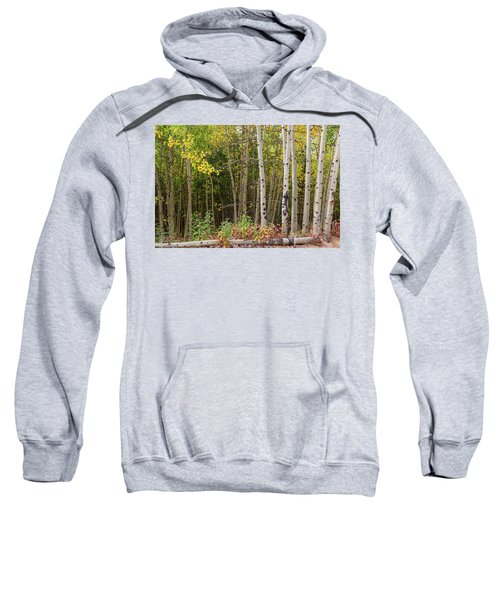 Sweatshirt featuring the photograph Nature Fallen by James BO Insogna