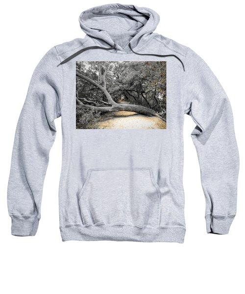 Nature's Way Sweatshirt