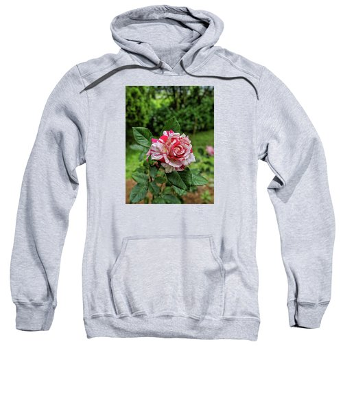 Neil Diamond Rose Sweatshirt