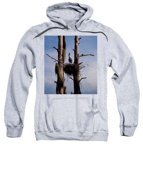 Nesting Sweatshirt