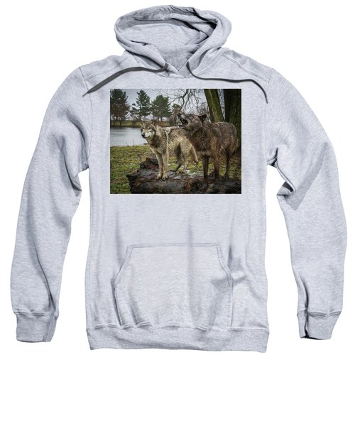 Noisy Wolf Sweatshirt
