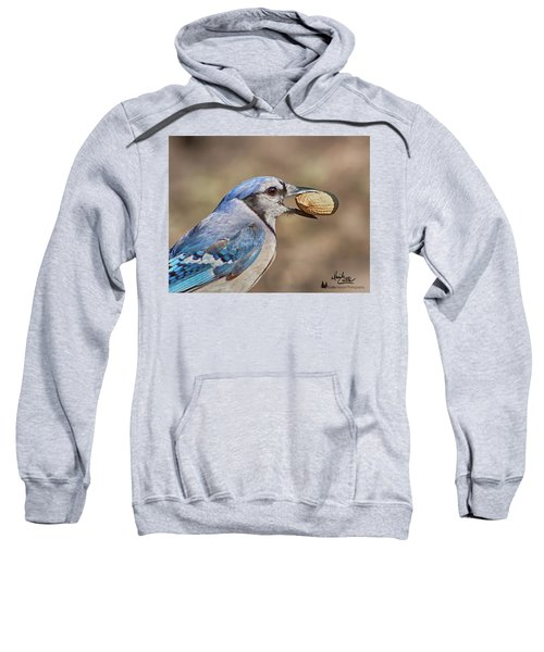 Nutty Bluejay Sweatshirt