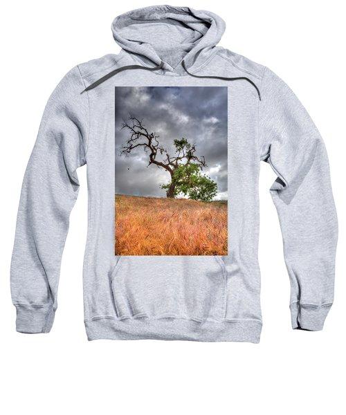 Old Oak Tree Sweatshirt