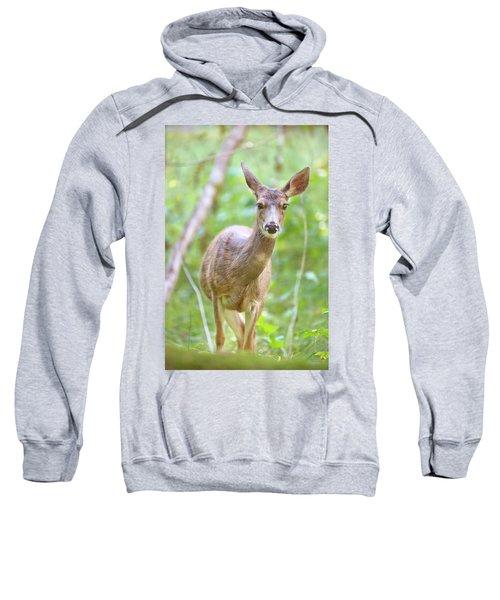 Olympic Doe Sweatshirt