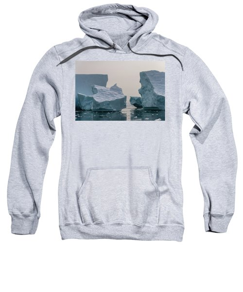 One Cube Or Two Sweatshirt