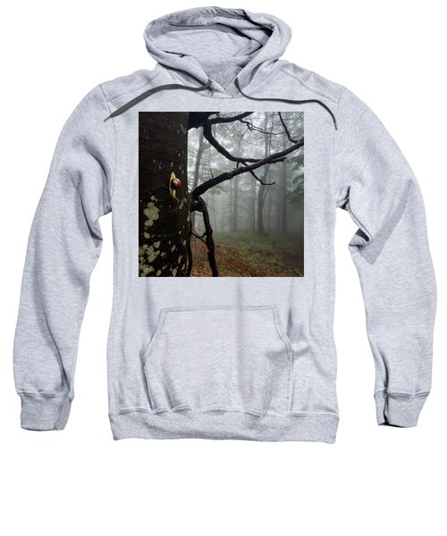 Sweatshirt featuring the photograph One Day Of The Snail's Life by Evgeni Dinev