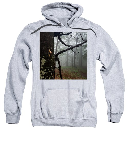 One Day Of The Snail's Life Sweatshirt