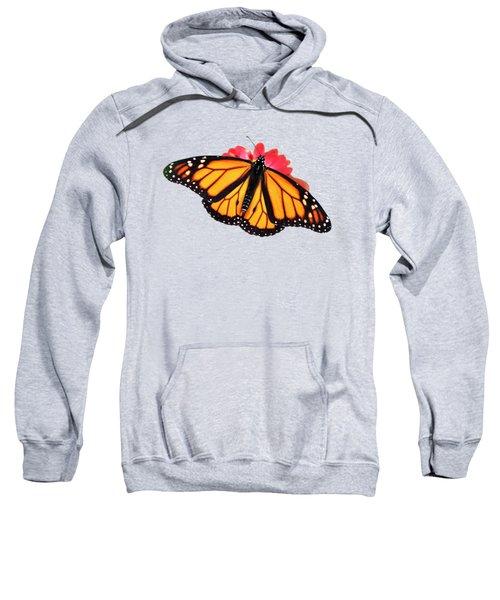 Orange Drift Monarch Butterfly Sweatshirt